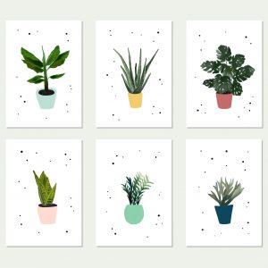 wenskaart planten botanisch
