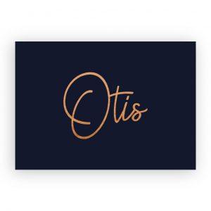 Geboortekaartje koperfolie Otis