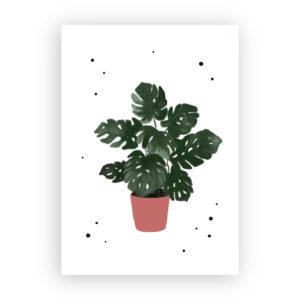 Wenskaart planten monstera